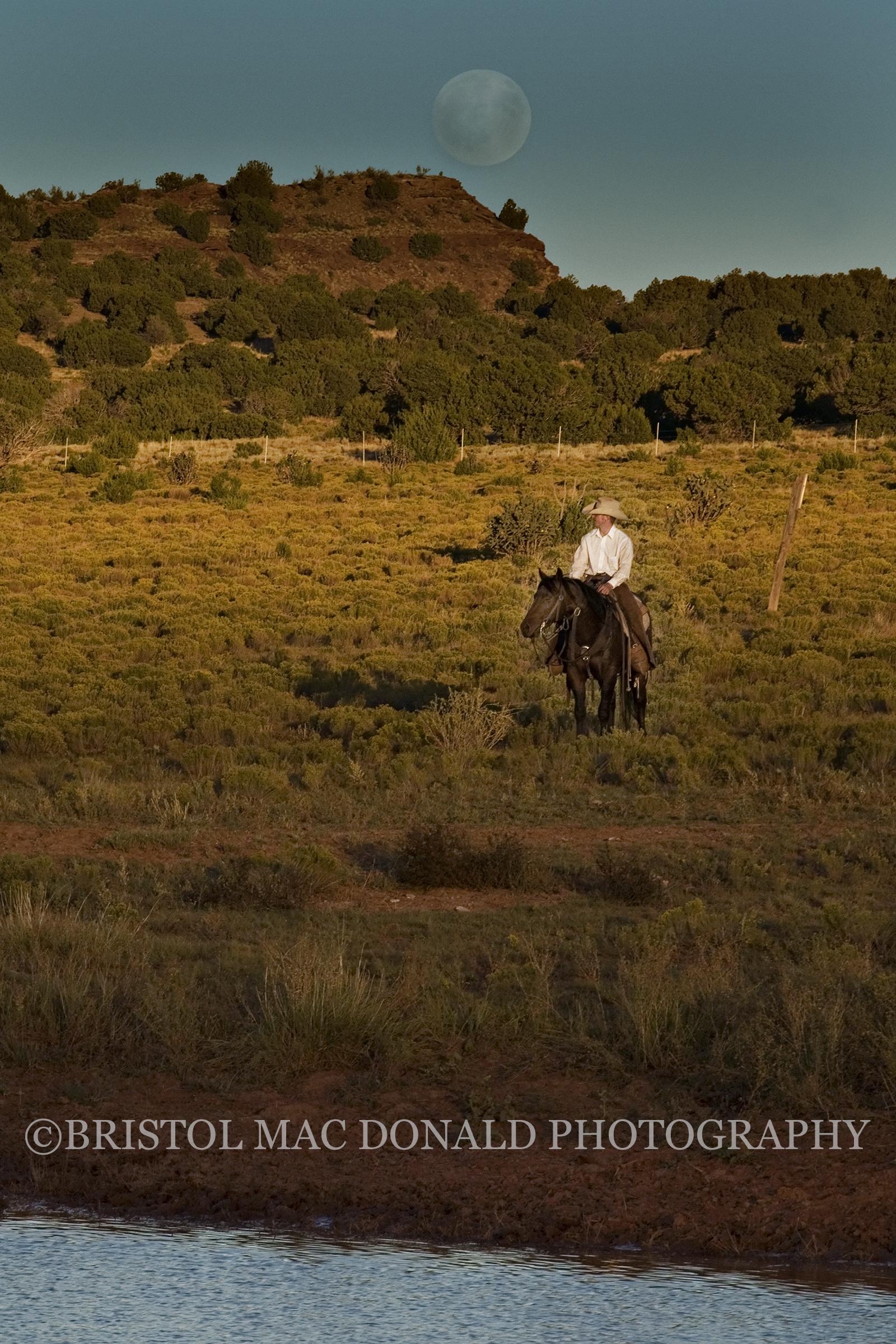 American Cowboy 18