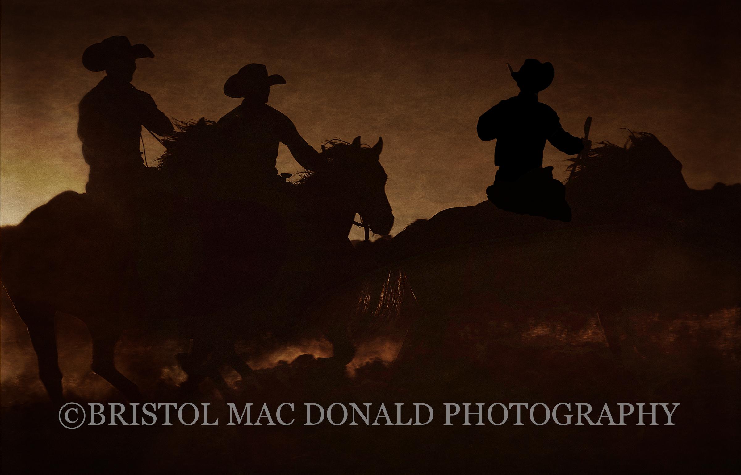 American Cowboy 22