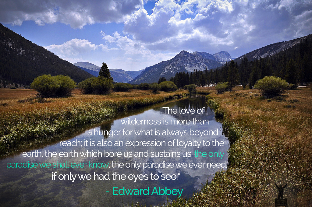 edward-abbey-quote-3.png