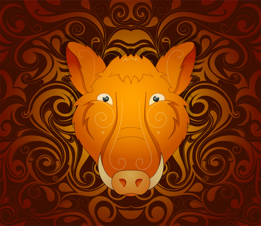 Boar pig as symbol for year 2019