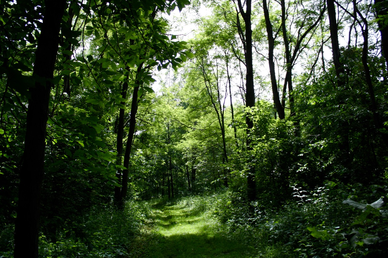 Green Trail,Governor Dodge State Park