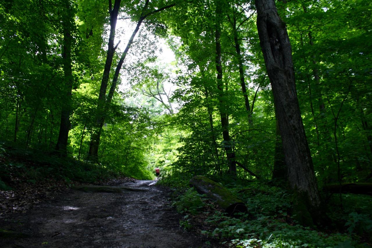 Trail,Governor Dodge State Park