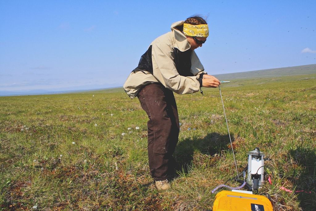 Measuring Soil Respiration, Thermokarst Project - Toolik
