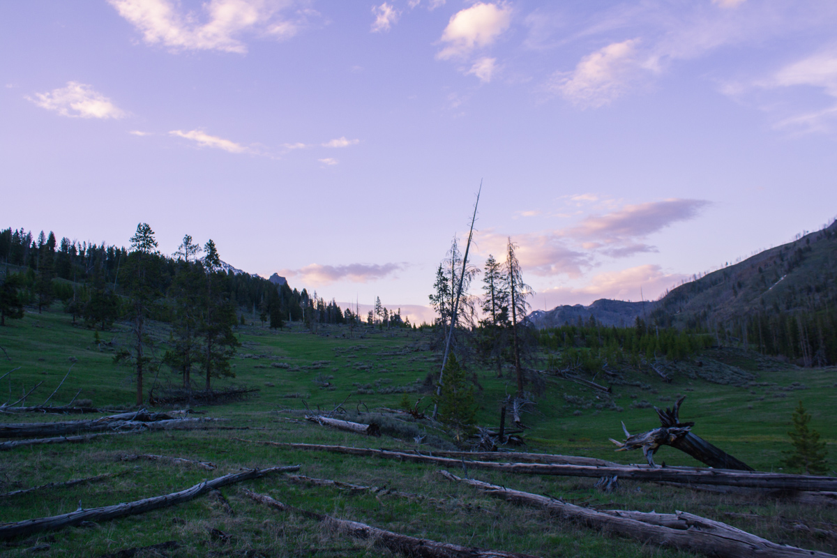 Last time I camped in Yellowstone National Park