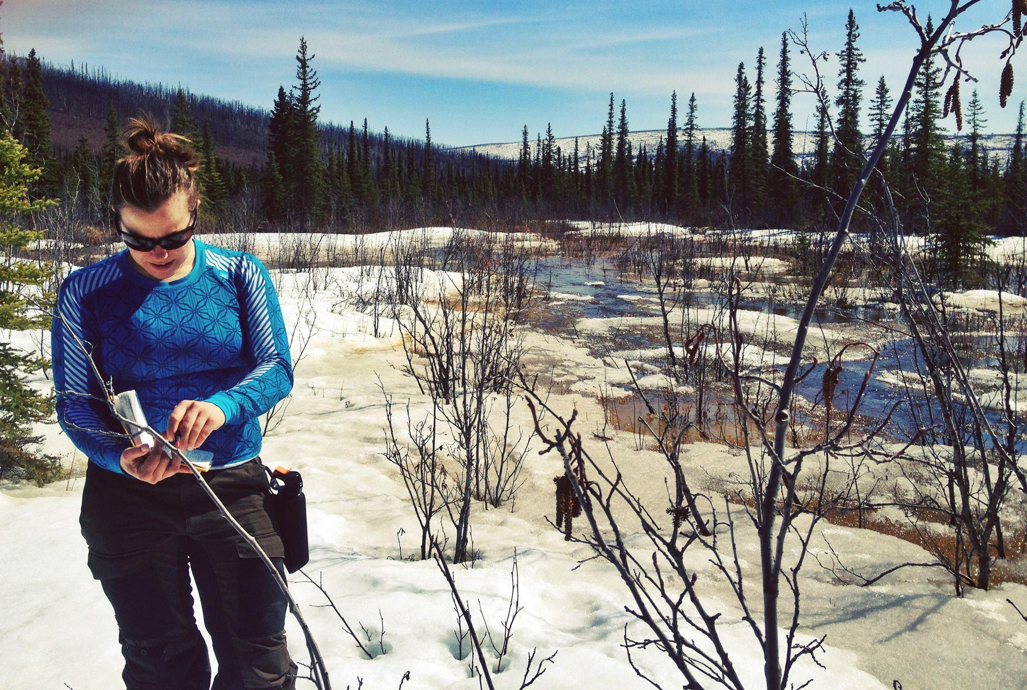 Fältarbete i Alaska 2