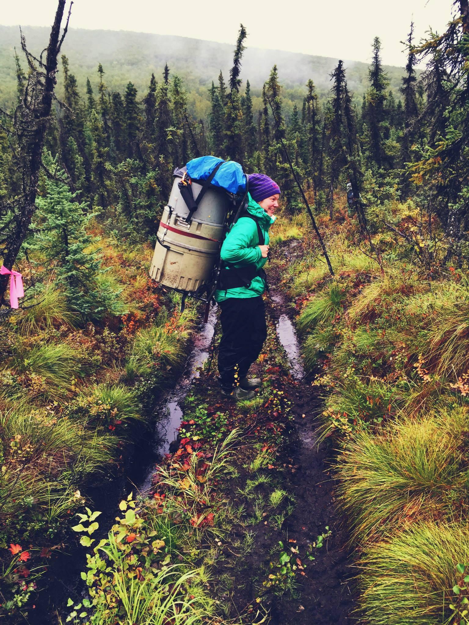Fältarbete i Alaska 1