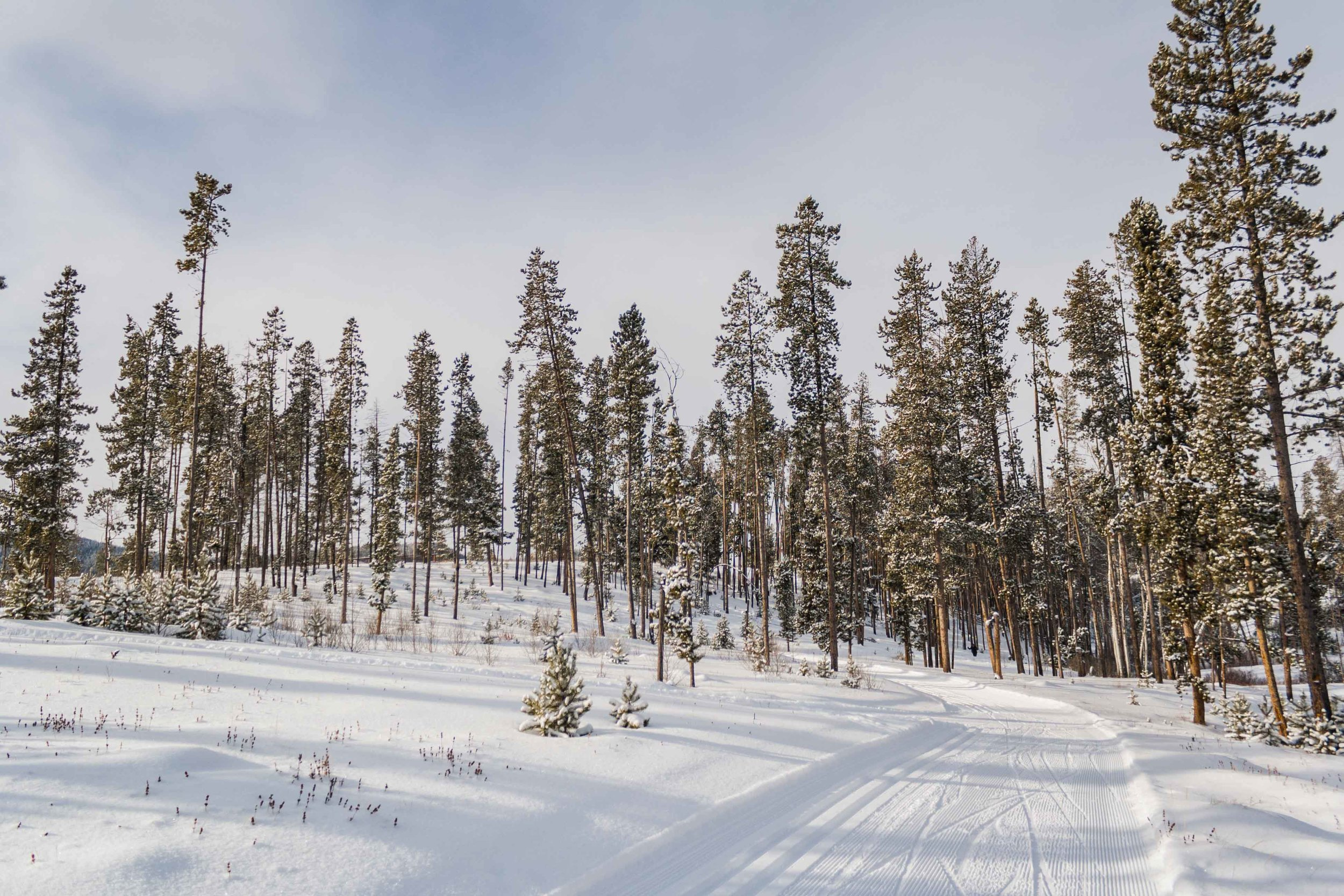 Homestake Pass, Montana. December 2016