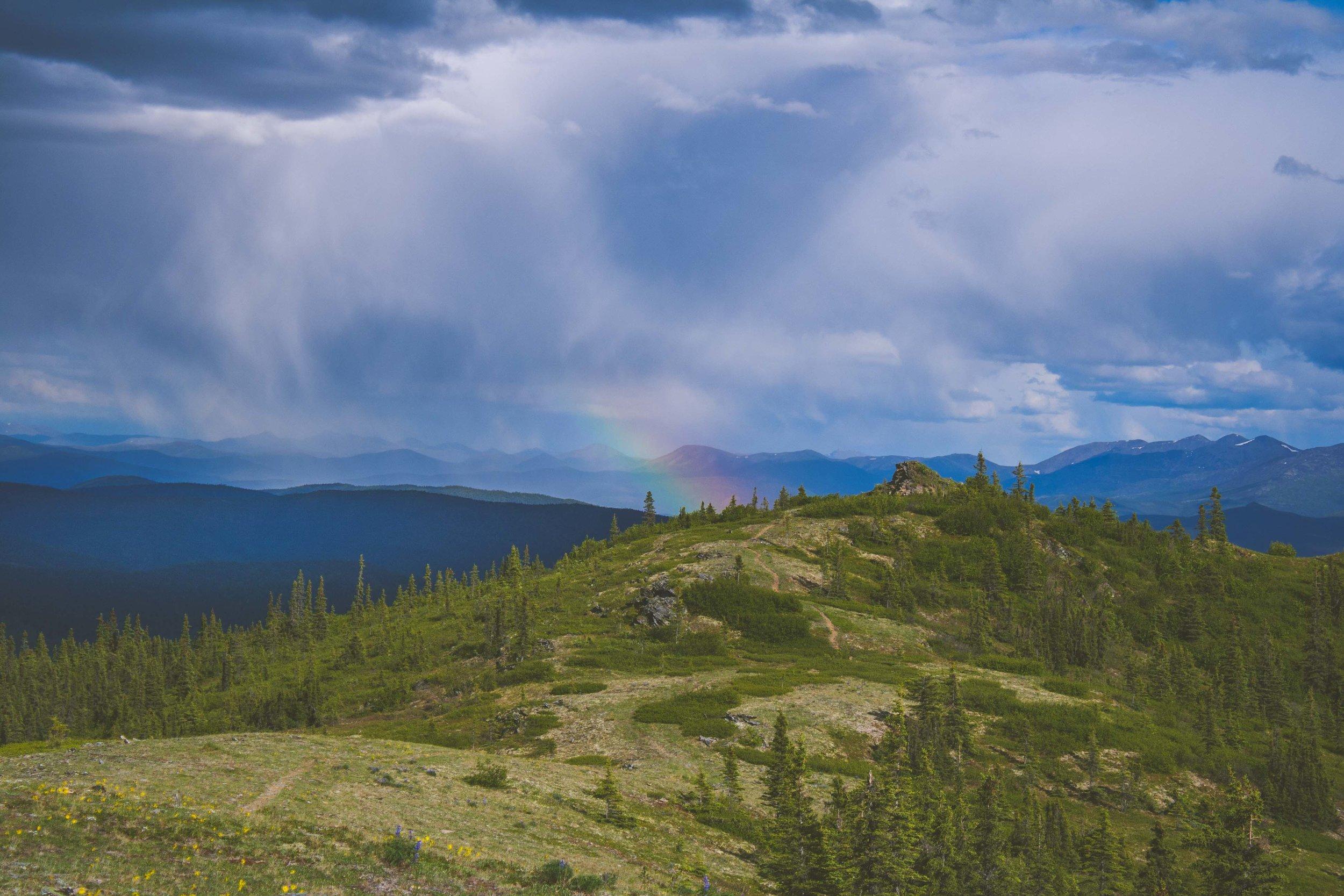 Chena Hot Springs Trail, Alaska. Juni 2015