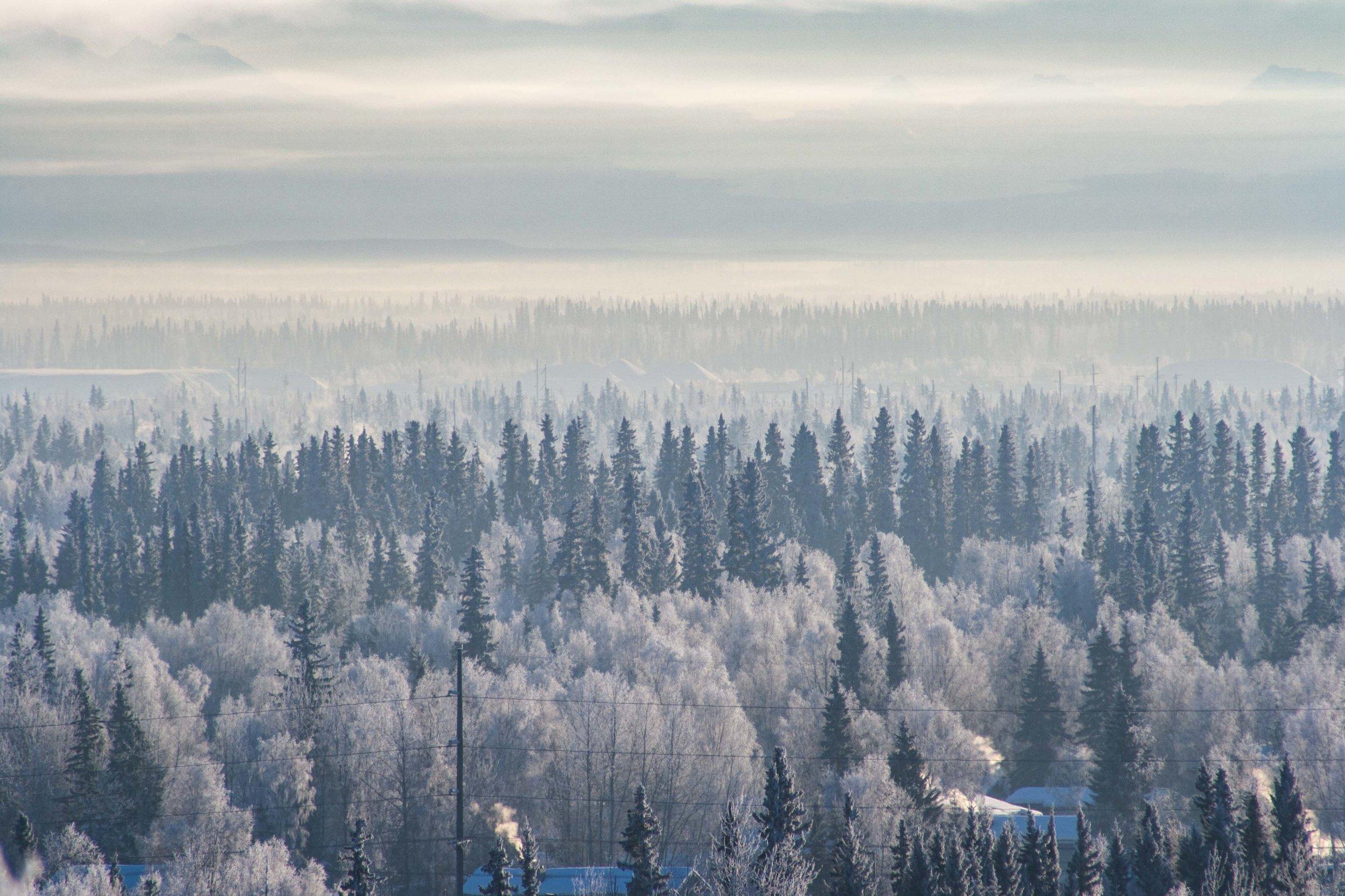 Fairbanks, Alaska. January 2013