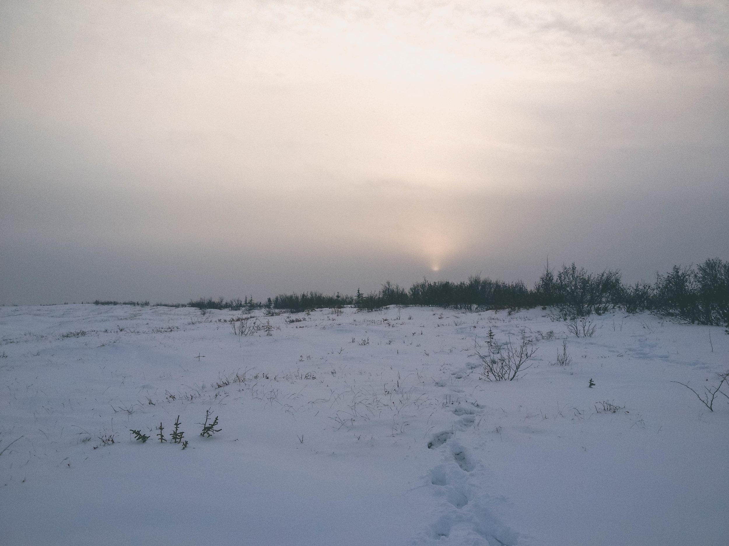 Fairbanks, Alaska. November 2012