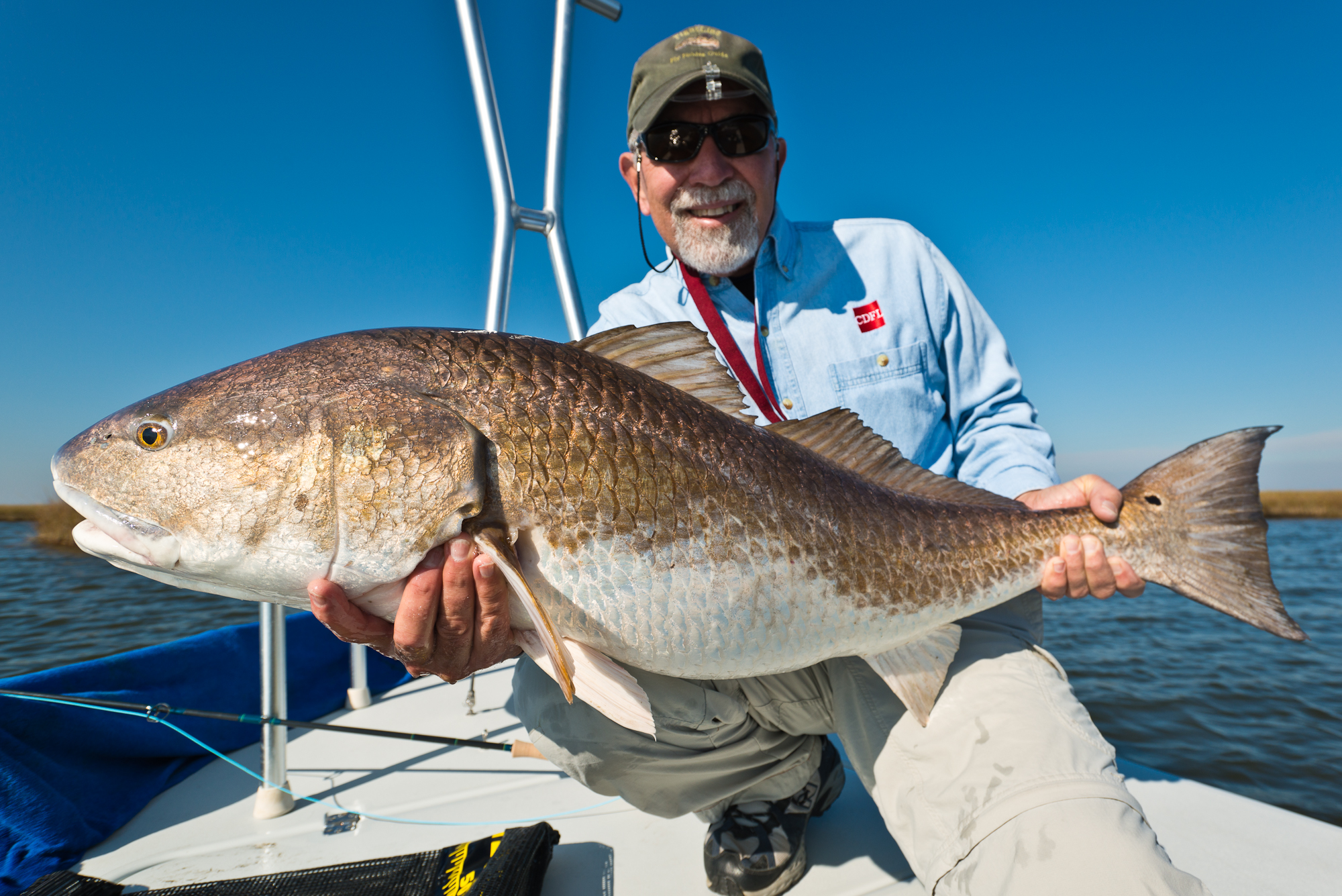 Sight Fishing for Redfish in the Louisiana Marsh with Southern Fly Expeditions.
