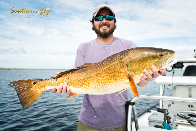 Last Minute Fly Fishing Trip Reels in Redfish