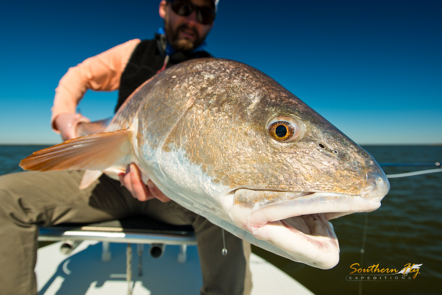 fly fishing for huge redfish in louisiana with Captain Brandon Keck and Southern Fly Expeditions
