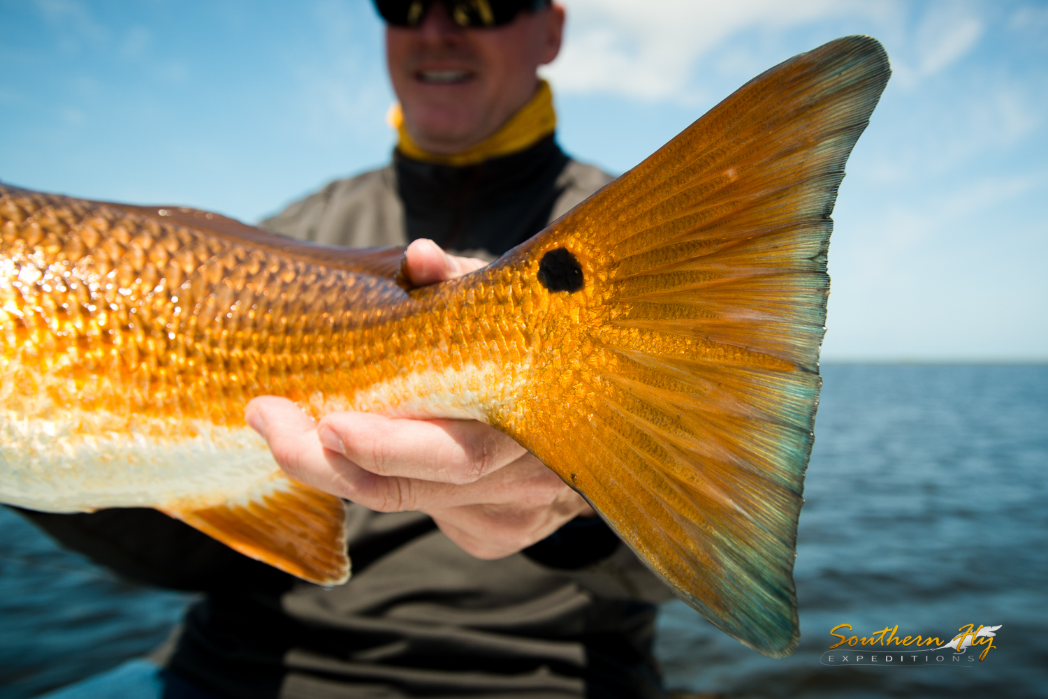 Southern Fly Expeditions Captain Brandon Keck Redfish fishing new orleans fly fishing
