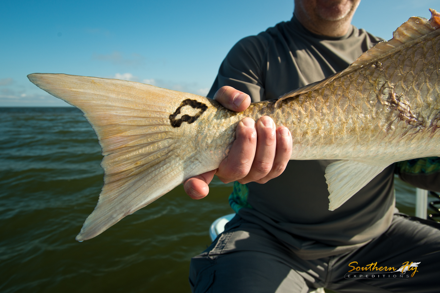 Fishing for redfish with Southern Fly Expeditions and captain brandon keck in New Orleans Louisiana