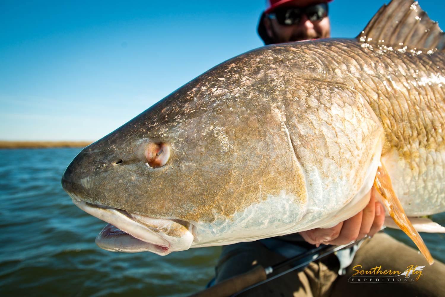Southern Fly Expeditions Louisiana Fly Fishing