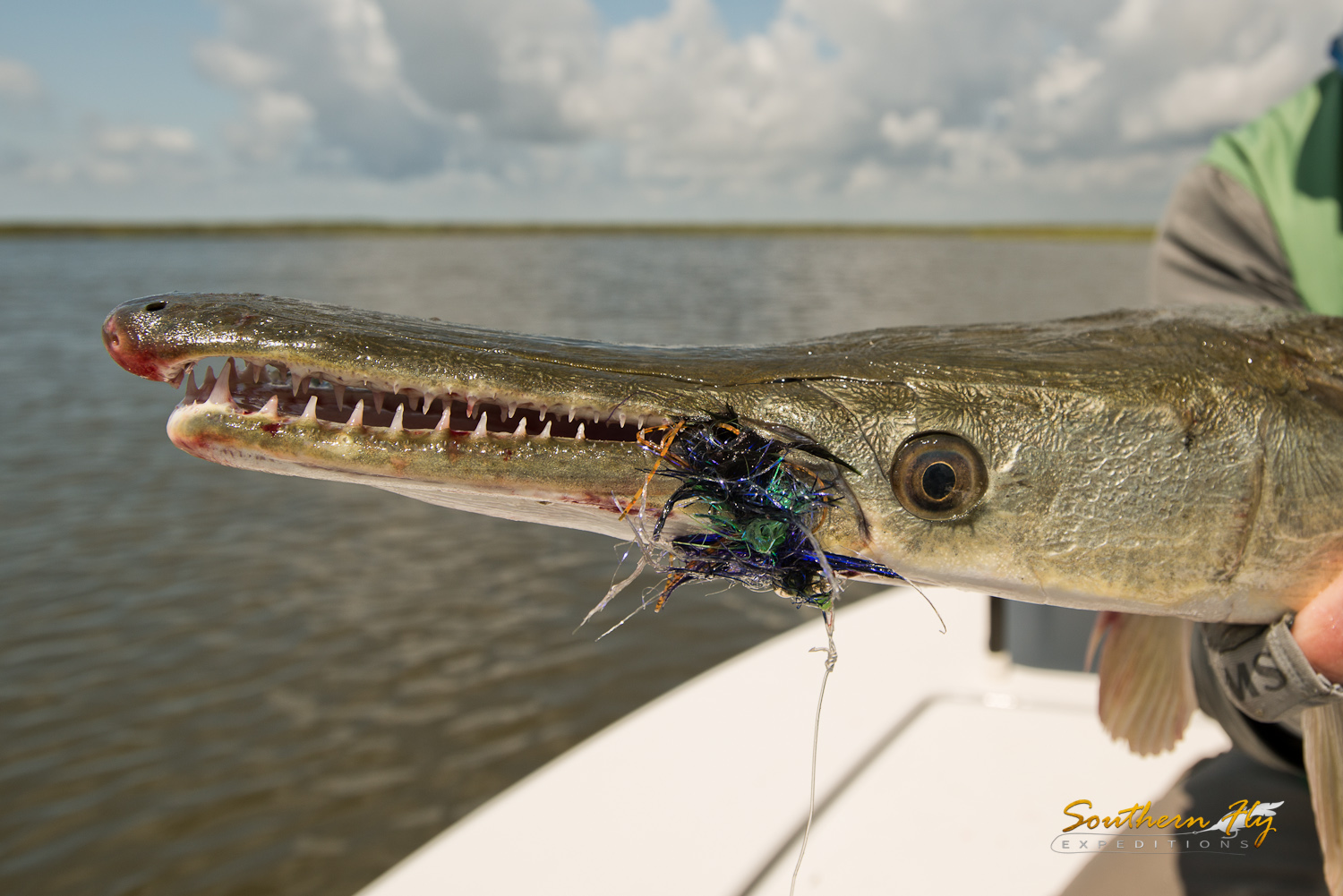 2019-06-29-07-01_SouthernFlyExpeditions_NewOrleans_DanWilcoxAndBrentByquist_Yellowdog-3.jpg