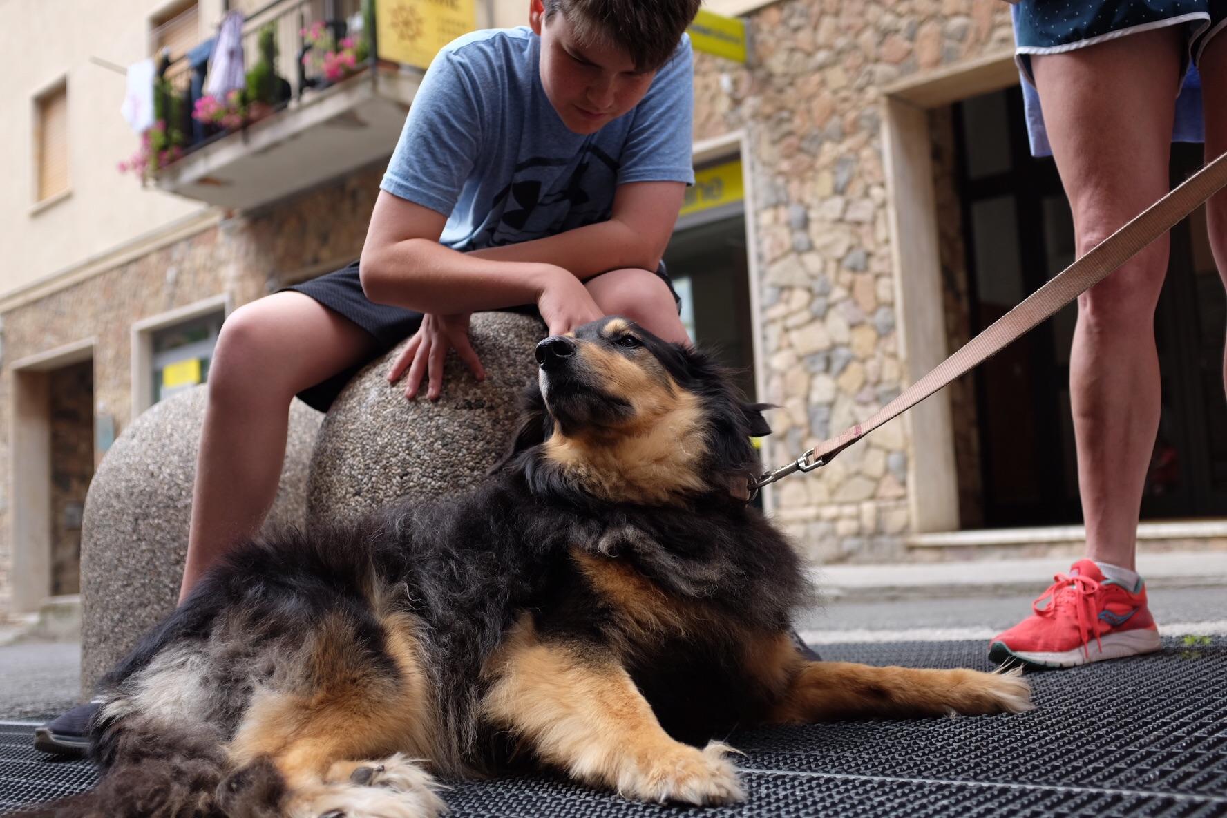 Sam meets Francesco's dog Billia