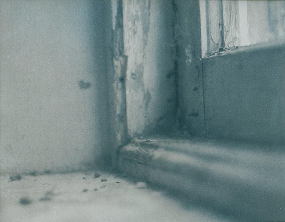 Cyanotype over Platinum, 2014