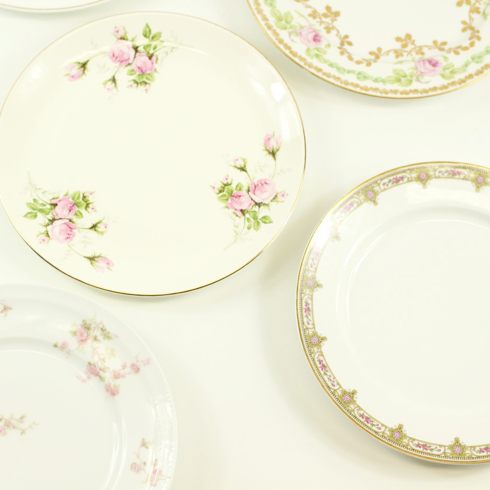Rose Collection Dinner Plates
