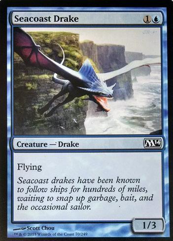 Seacoast_Drake_M14.jpg
