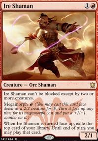 Ire Shaman.full.jpg