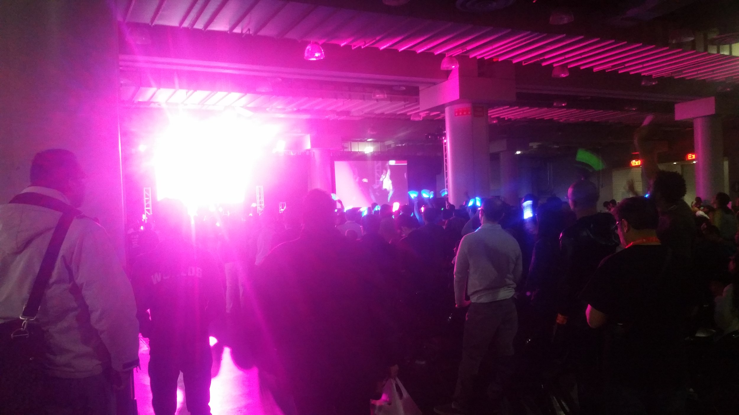 Anime Diva Concert, Snuck a Pic.