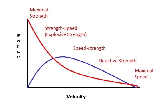 FIGURE 1 - THEORETICAL FORCE-VELOCITY CURVE & POWER CURVE
