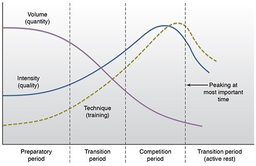 Matveyev's Classic Periodization Model - While this graph presents an example of the manipulation of volume and intensity of training, many modern day coaches agree that it's too simplisitc to reflect the training of sport today.