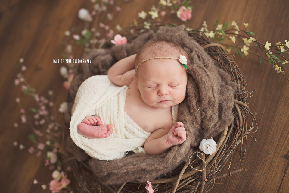 Oneida NY Newborn Photographer