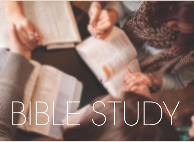 Happy Monday !! Hope your Monday went well. Just wanted to remind all the youth that  there will be a bible study for the youth Tommorrow night at 8 pm at church!! See you there !!