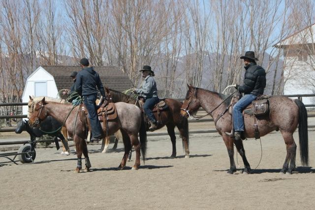 western riders.jpg