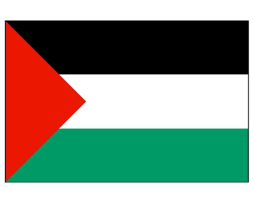 palestine_flag.jpg