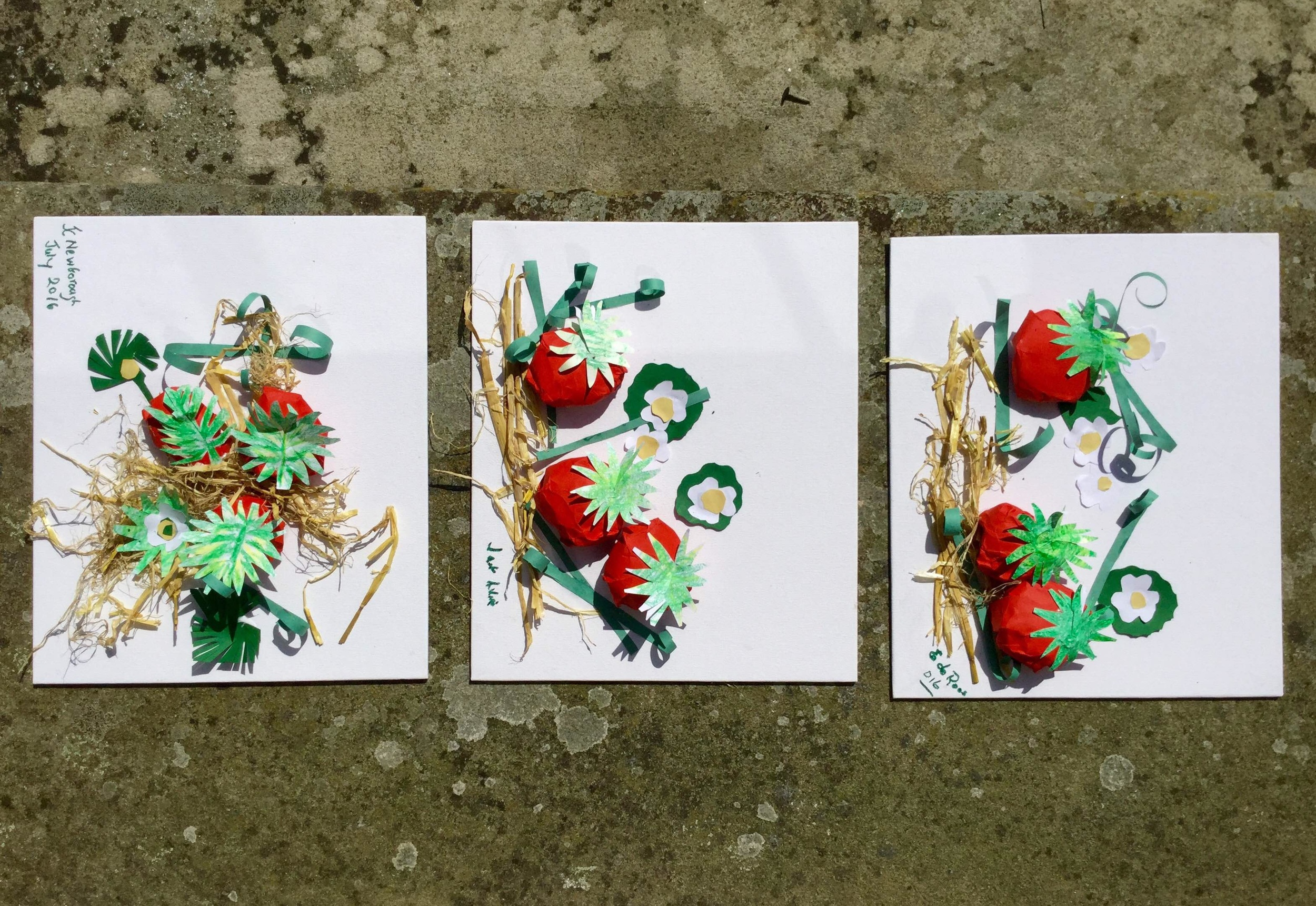 Strawberry artworks made at Newlands of Stow Care Home