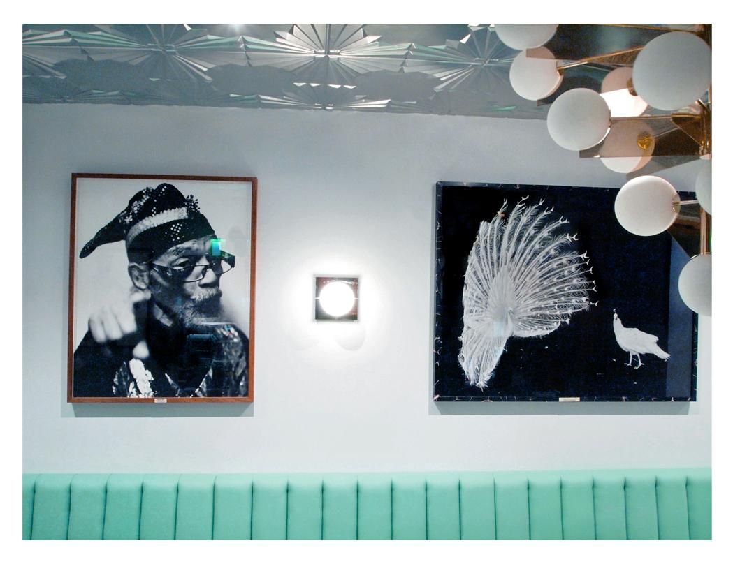 Marshall and the Peacocks