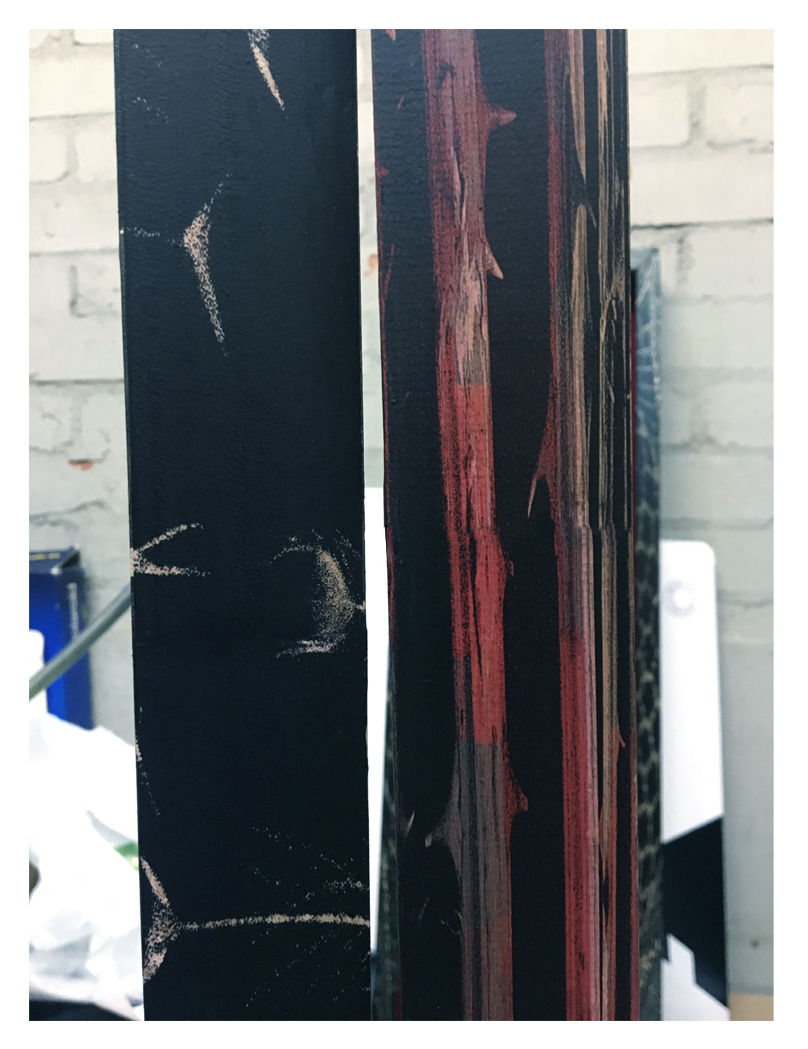 Two samples of the image transfer frames.