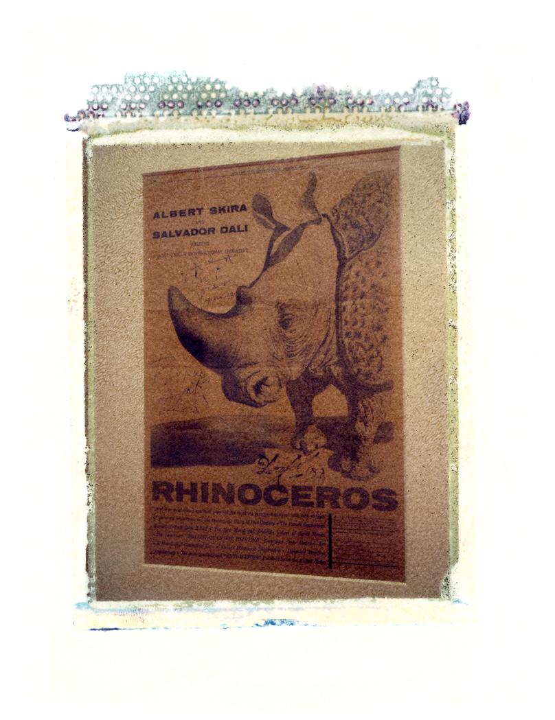 From the exhibition 'El Ojo De Libertad' - The Residencia Madrid 2000 (Polaroid Transfer)
