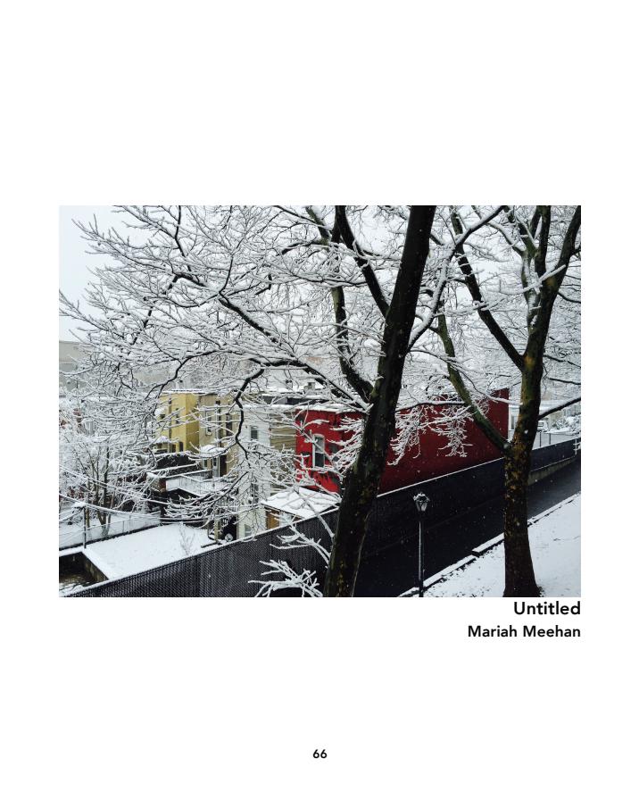 Screen Shot 2018-01-18 at 3.41.49 PM.png