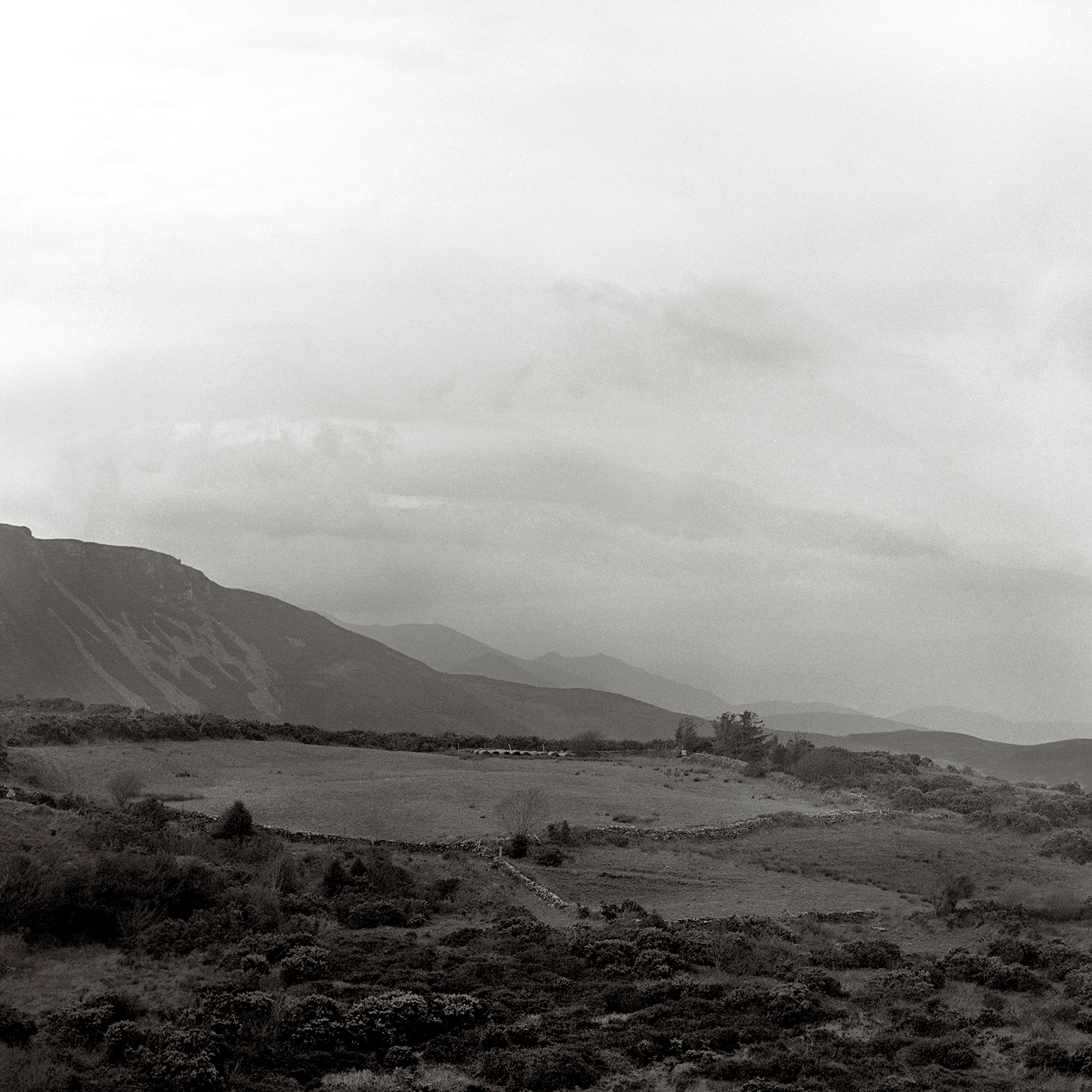 Landscape2007.jpg