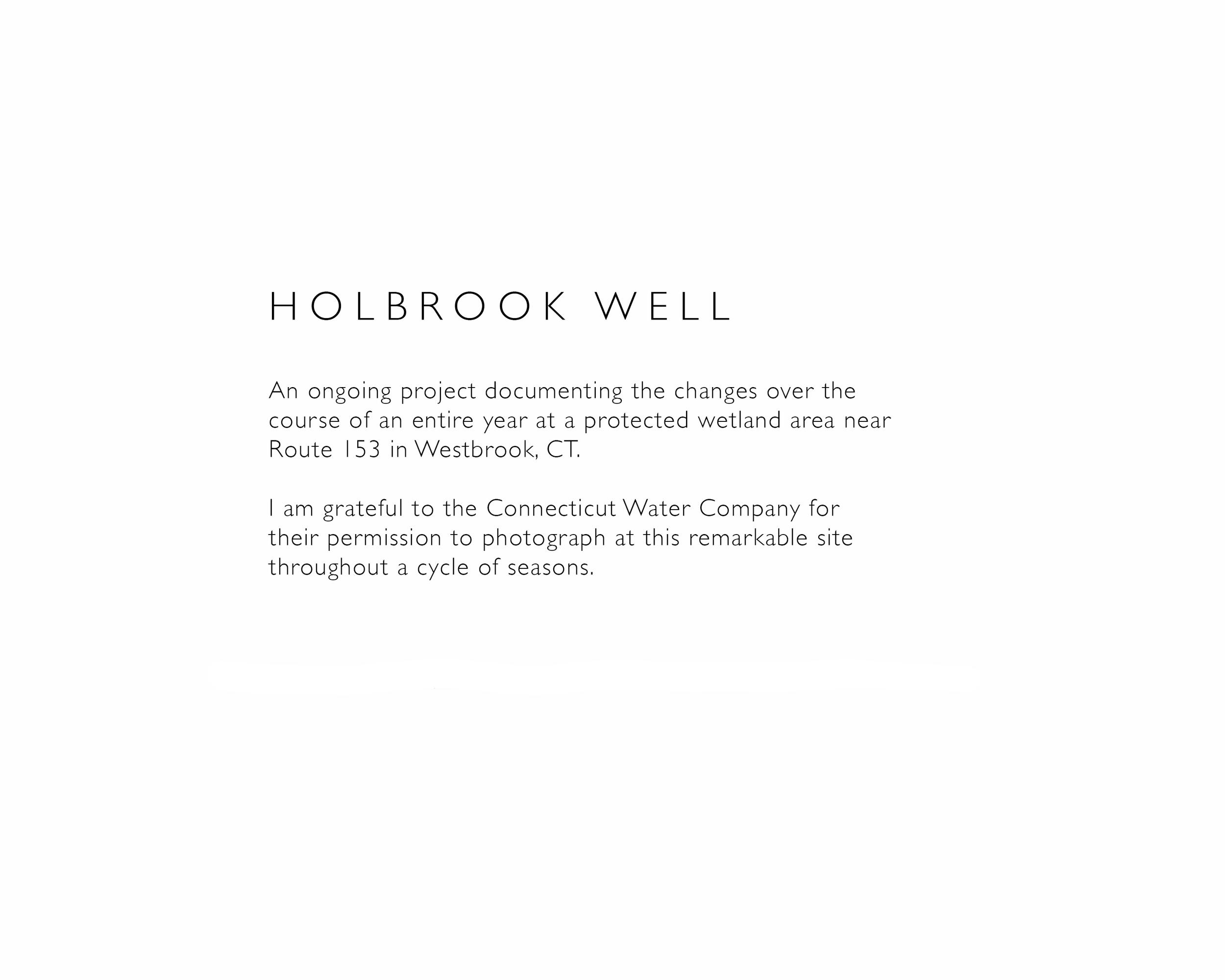Holbrook.jpg