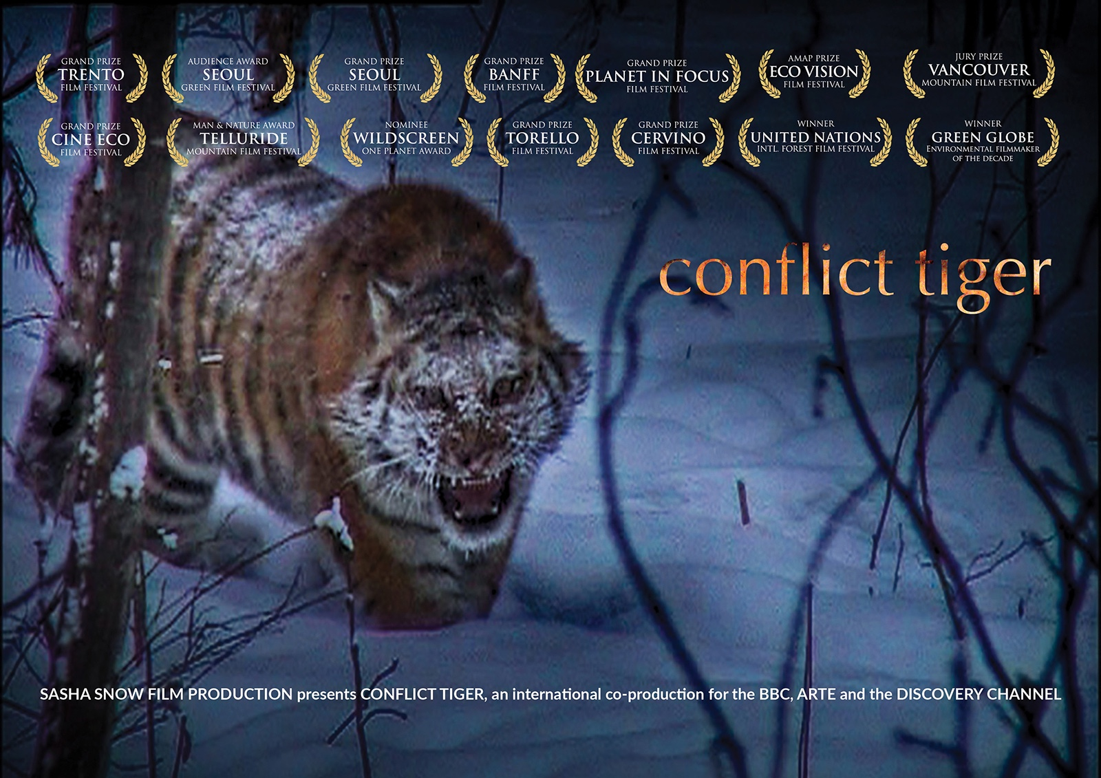 CONFLICT TIGER AWARDS.jpg