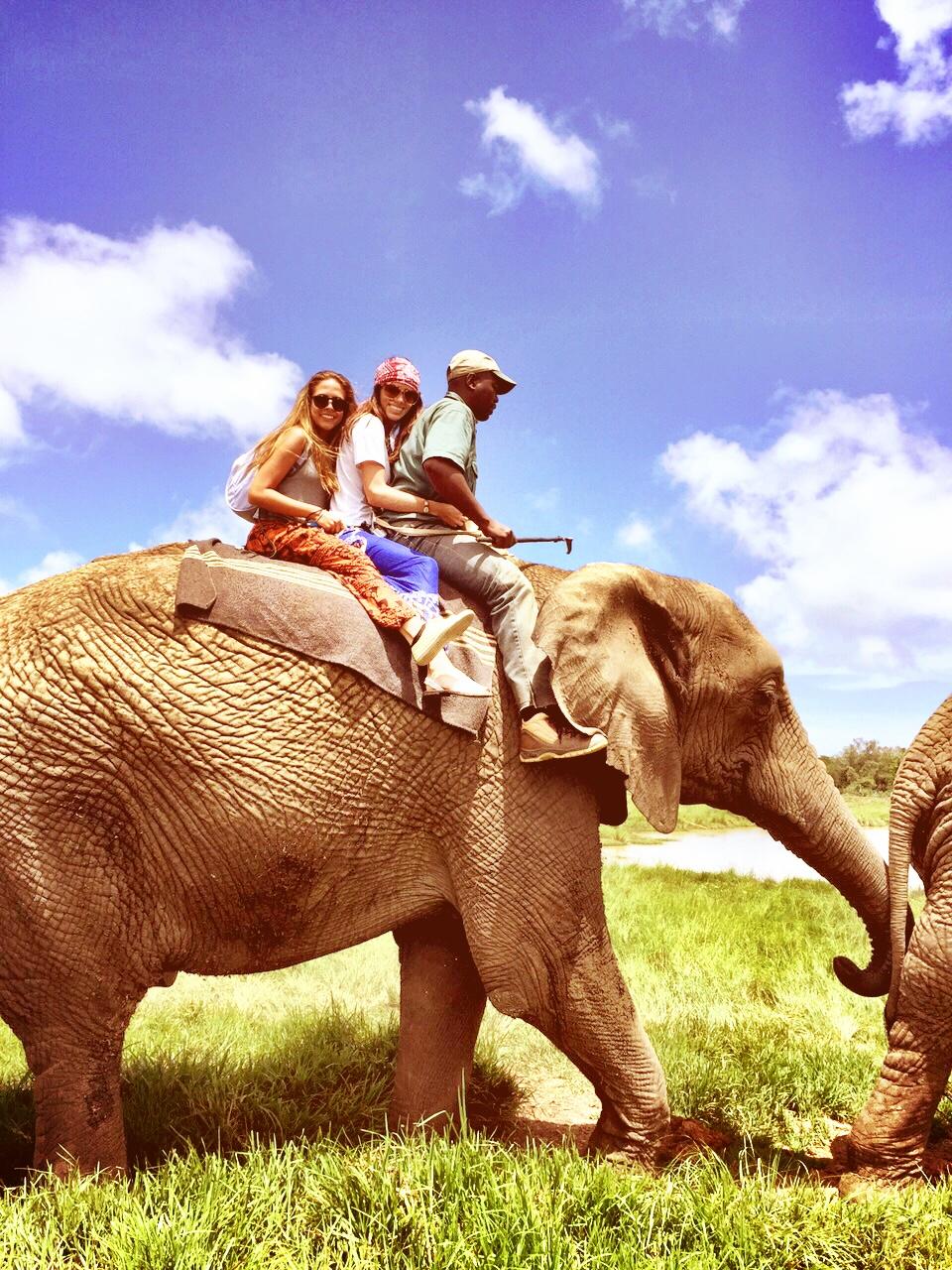 Knysna -  Elephant Sanctuary