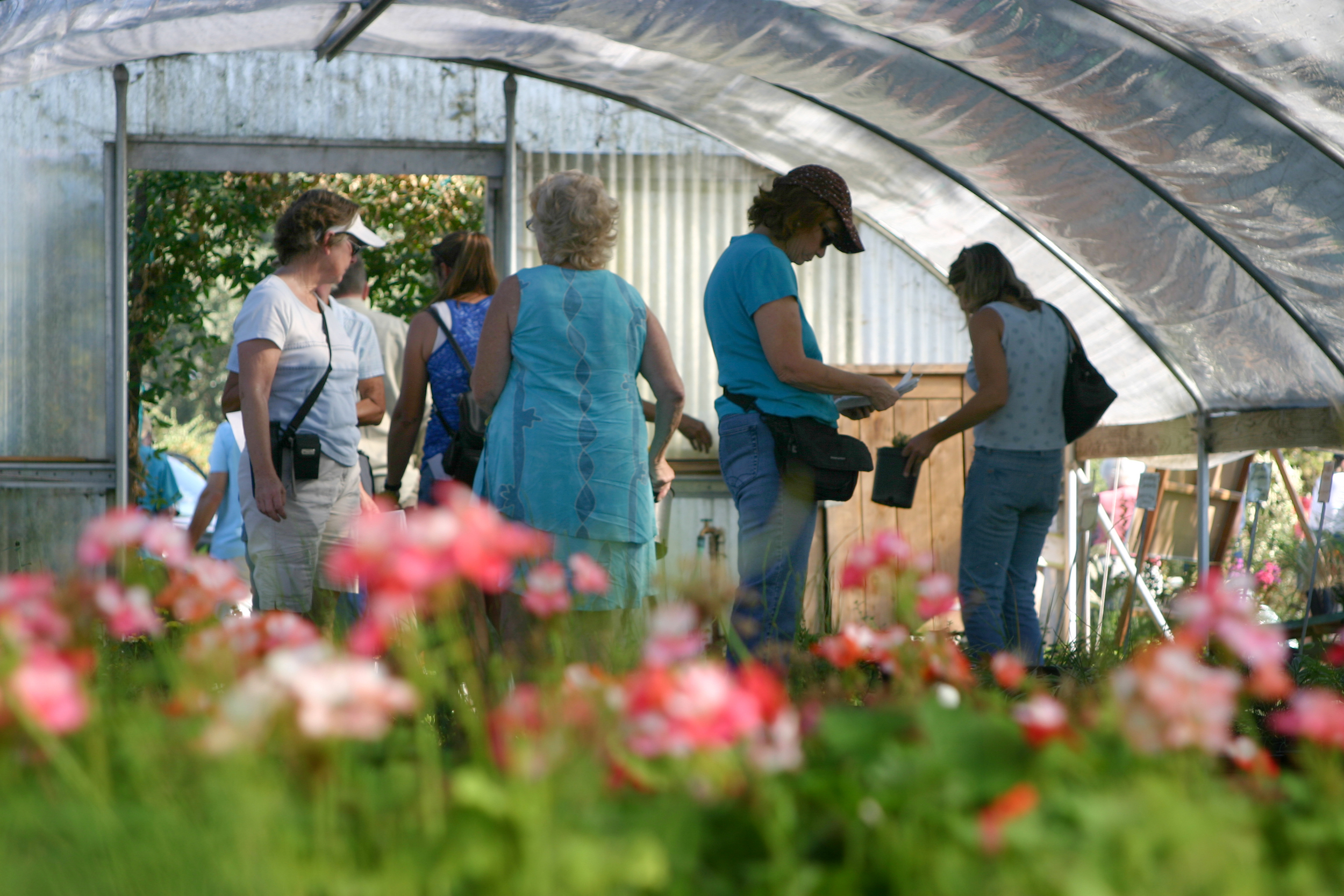The public browses greenhouse filled with products grown through the Jail Industry Program.