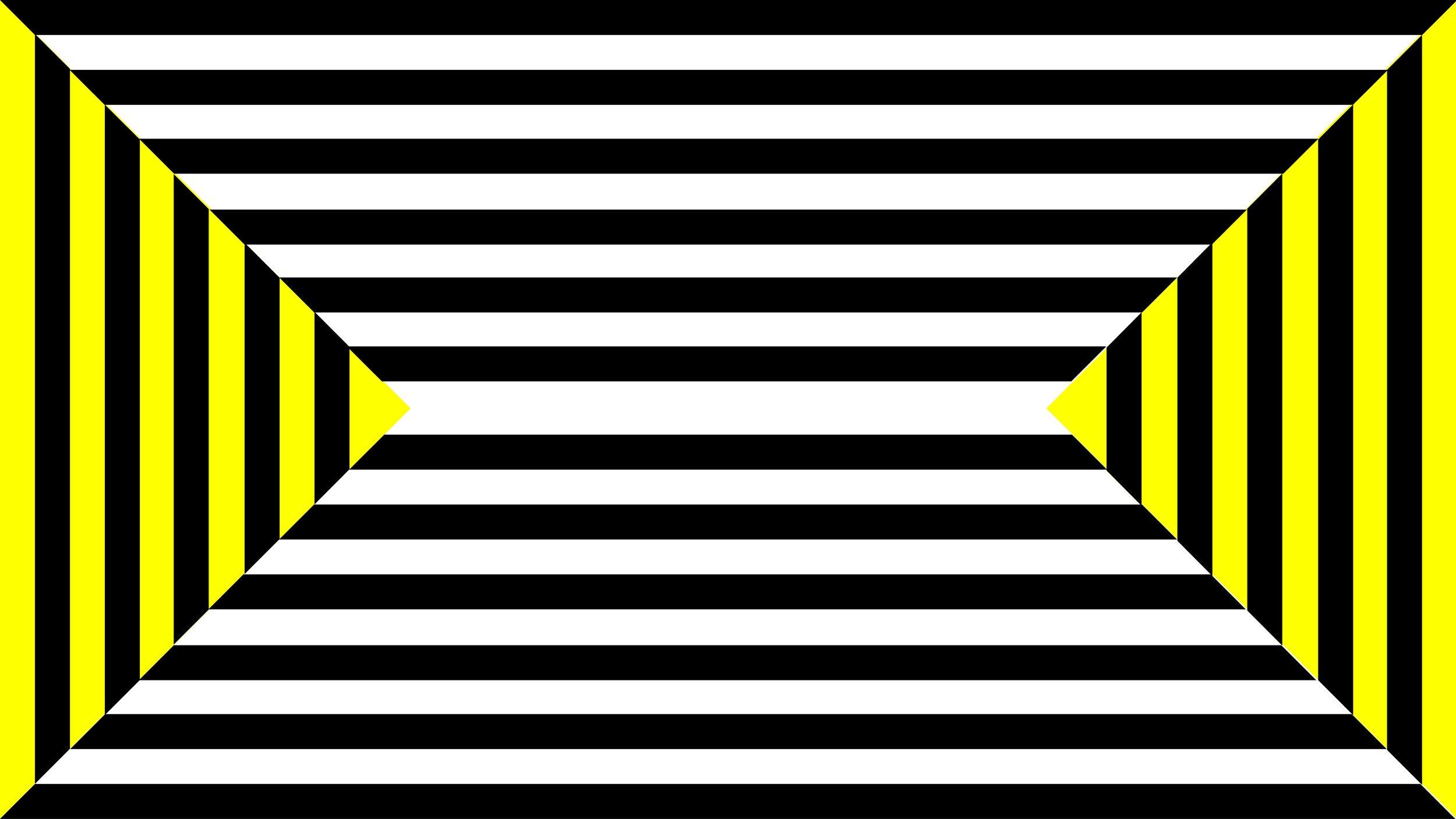 zebra_8.19_forweb-08.jpg