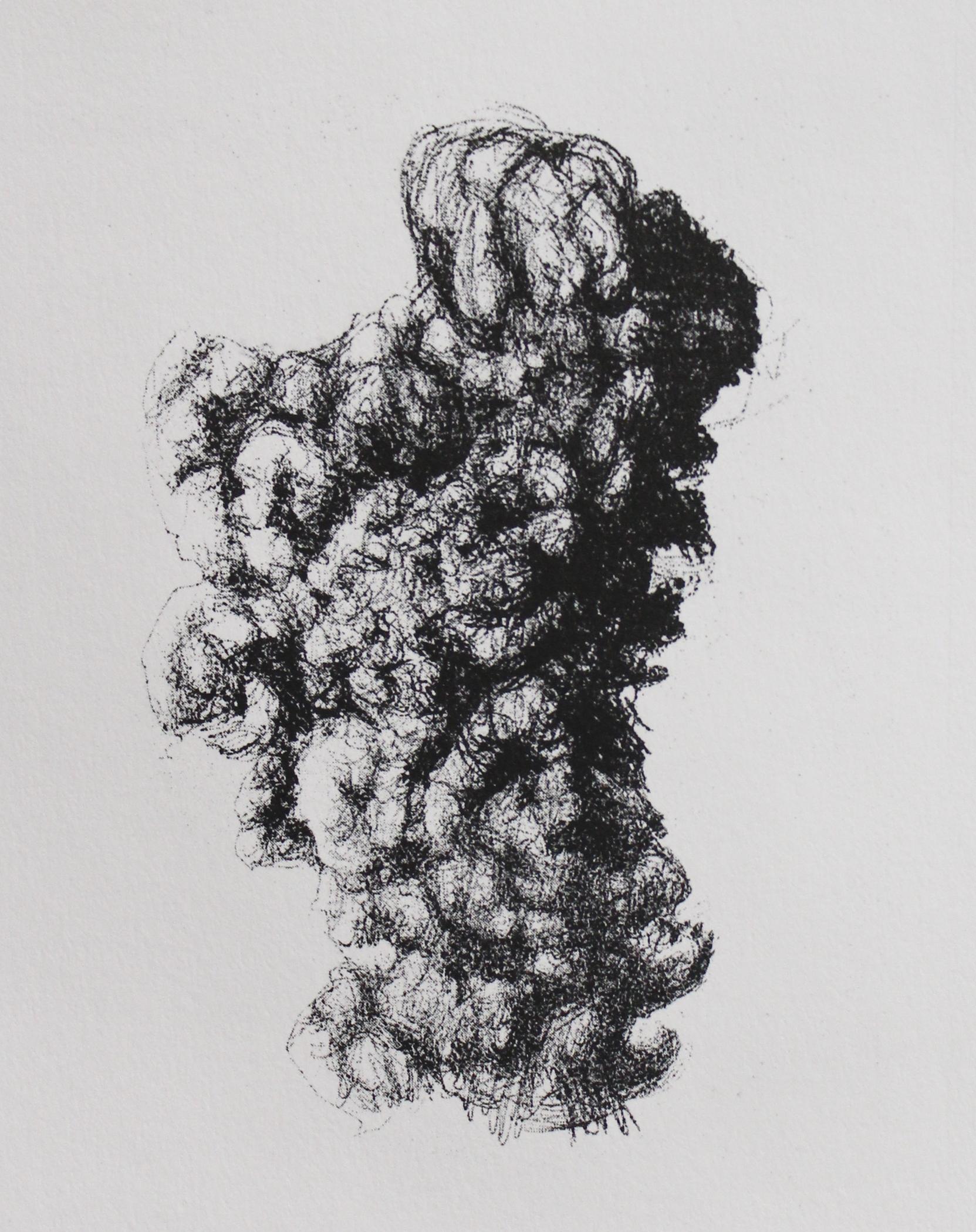 Micropyrocumulus