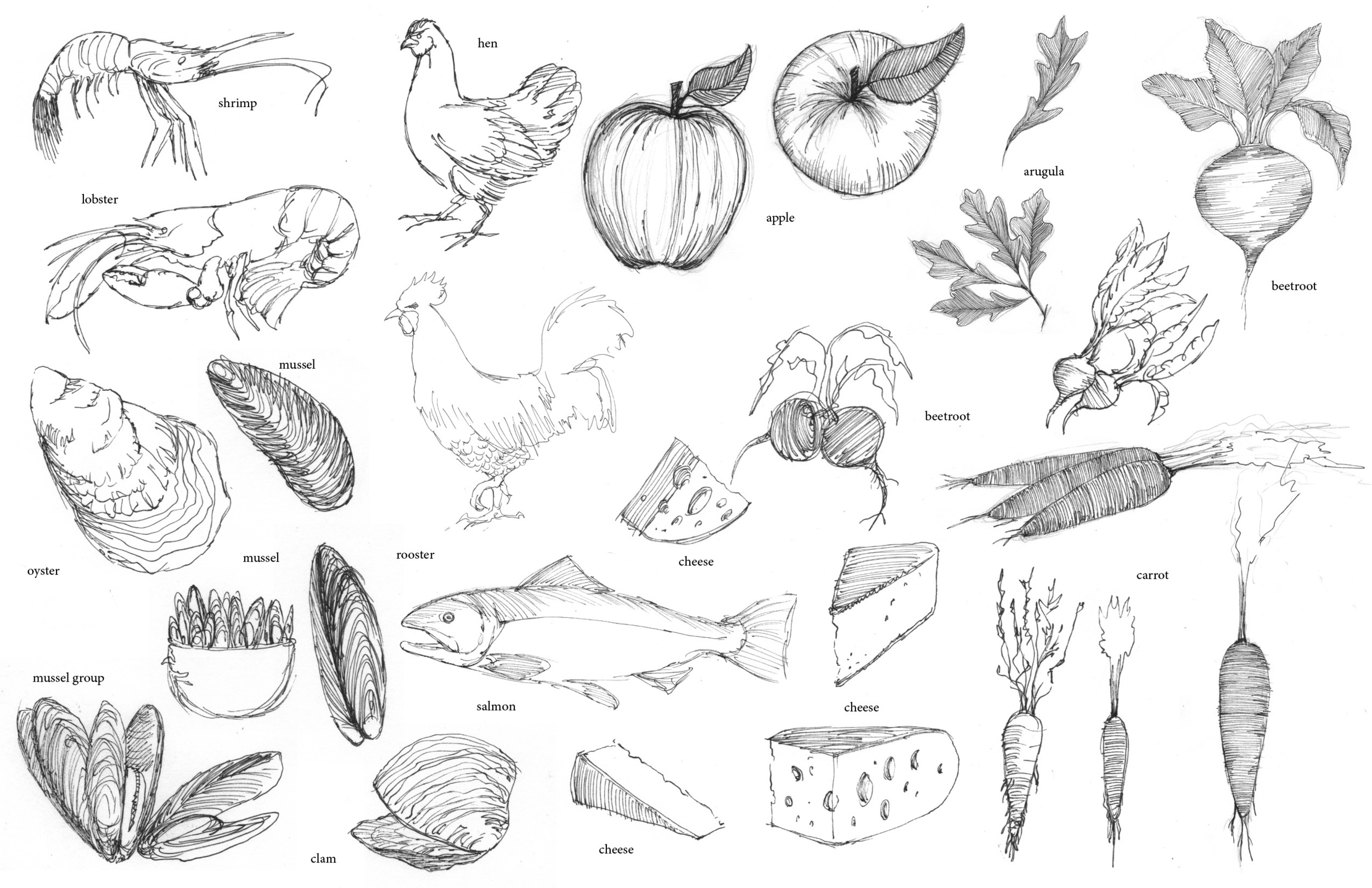 Rough Sketches for restaurant menu illustrations.