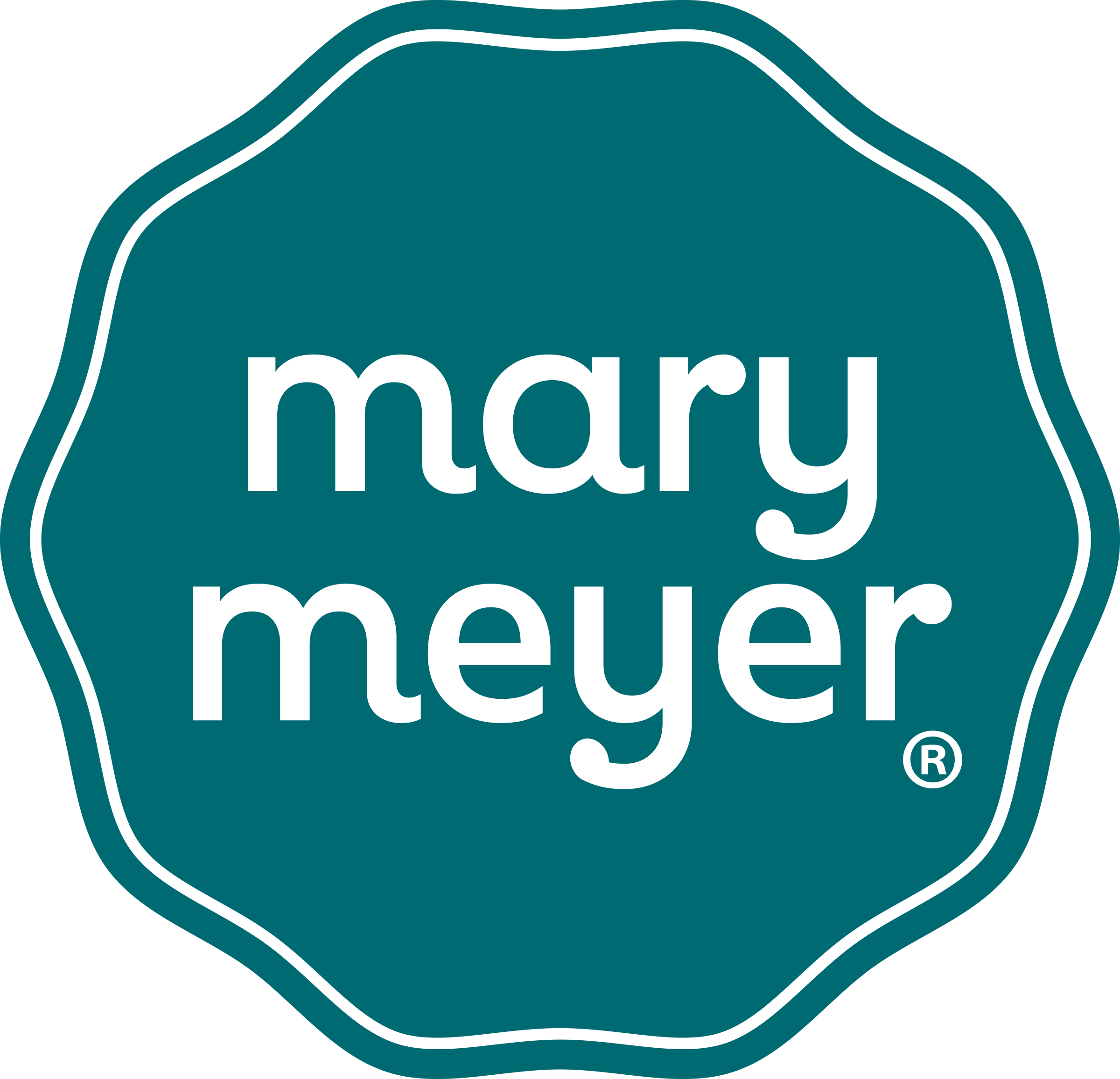 MaryMeyer_logo.png