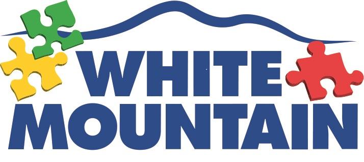 WMP Logo 2015-3 pieces.jpg