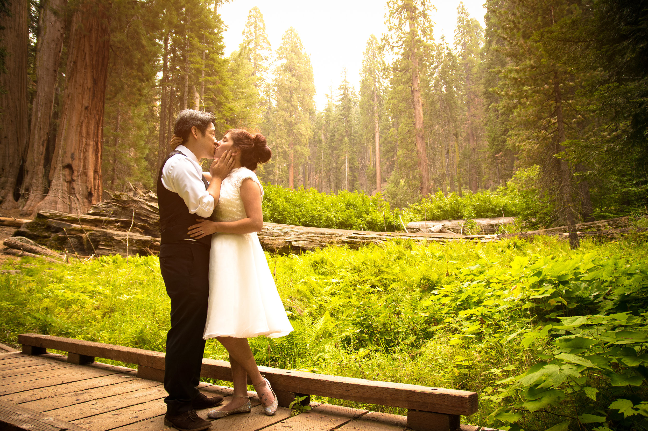 HUANG WEDDING- SEQUOIA NATIONAL PARK