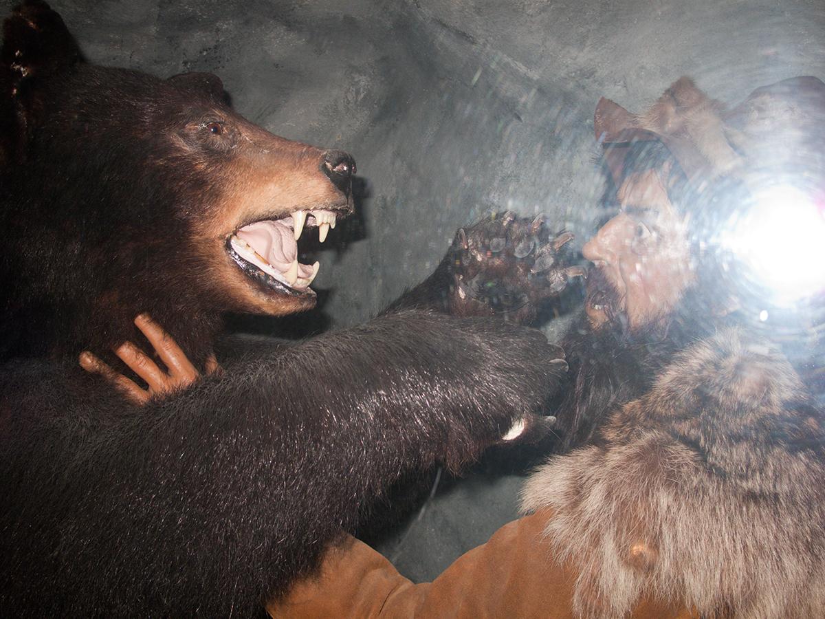 Bear Attack, 2011